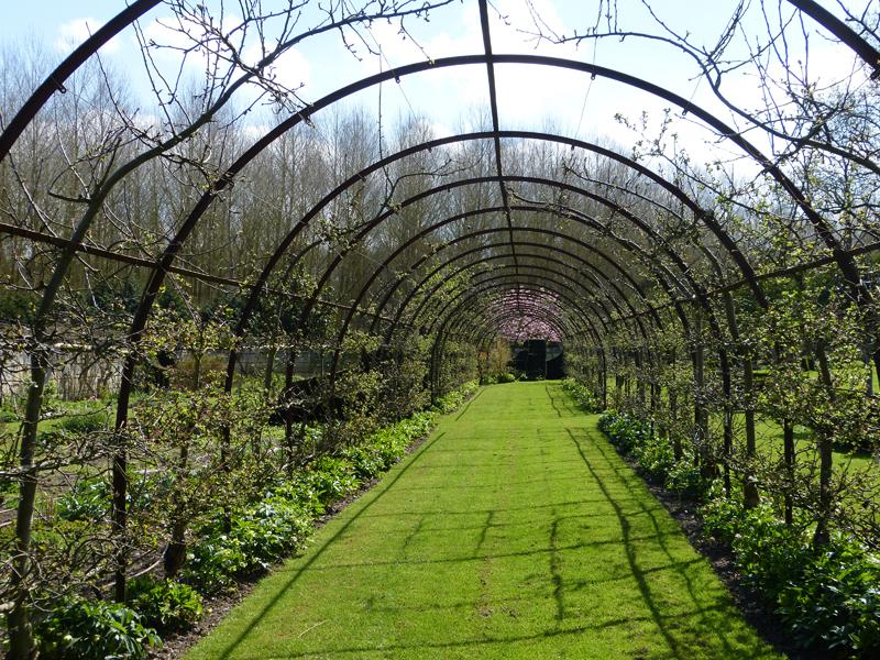 The Apple Allée, An Idea Borrowed From Highgrove House, Residence Of  Englandu0027s Prince Charles.